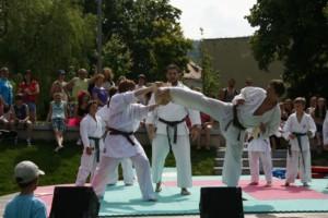 2011 - ukázka DDM park Kociánka ÚO