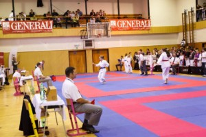 14. ročník turnaje KARATE